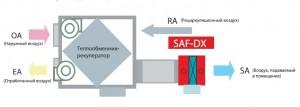 saf-dx - 1